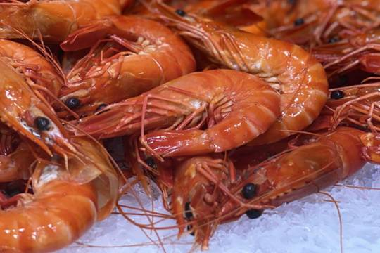 Large cooked tiger prawns